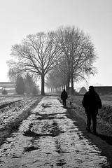 Soli al freddo (Fr3dd3rico) Tags: morning winter bw snow cold ice alberi loneliness bn neve chase grayscale freddo biancoenero ghiaccio mattino solitudine cammino inseguimento inveruno d3100 fr3dd3rico