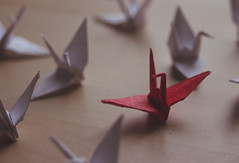 crowds. (sweetgrayundersides) Tags: wood red white bird paper out stand origami crowd grain pale folded fold differences seperation seperate
