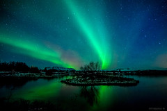 Perfect Scene? (Frijfur M.) Tags: nightphotography blue winter white lake snow mountains reflection tree green night stars landscape iceland nightshot thingvallavatn thingvellir ingvellir sland northernlights auroraborealis ingvallavatn norurljs thingvellirnationalpark canon5dmarkii samyang14mm frijfurm