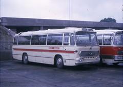 HAM505E (21c101) Tags: bedford duple basingstoke bedfordvam dupleviceroy ham505e wiltsanddorset 919 vam14 1967 1969 busstation