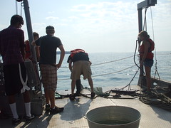 2012 EEOB 1930 Intro to Aquatic Ecology (Ohio Sea Grant and Stone Laboratory) Tags: summer college students ecology field horizontal landscape outdoors boat education day lakeerie science class course greatlakes highschool osu lifejackets 2012 ohiostateuniversity trawl gibraltarisland stonelaboratory introductiontoaquaticbiology ohioseagrant sciencecruise collegecreditcourse
