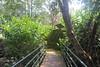 057 (balagopalmohan) Tags: rain country wyanad
