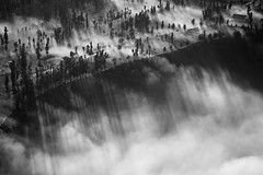 The Waterfall of Light (TheFella) Tags: morning travel trees light blackandwhite bw mist mountain mountains tree slr monochrome misty fog clouds digital photoshop sunrise canon indonesia landscape eos dawn volcano java photo nationalpark asia southeastasia cloudy fineart hill foggy hills beam photograph processing 5d mysti