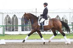 IMG_0791 (RPG PHOTOGRAPHY) Tags: final awards hickstead 5y 200712
