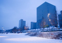 Paris sous la neige. Bibliothque Nationale de France. (QuidamCress) Tags: city snow paris france neige bibliothquenationaledefrance dominiqueperrault bibliothquefranoismitterrand