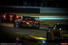 APR-Motorsport-Rolex-24-2013-119