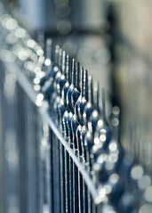Bokeh Bars (jillyspoon) Tags: black fence bokeh depthoffield harrogate railings twisted territory canon70200 blackpaint canon60d