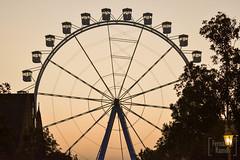 Roda-gigante (Fernandamrl) Tags: fernandamrl rodagigante diversao amorpelafotografia respirofotografia