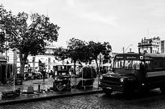 Mercado Pblico de Pelotas - RS (Alecxandro Nascimento) Tags: pelotas praa coronel pedro osrio