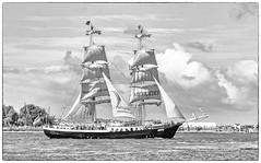 160818-1 (sz227) Tags: mercedes brigg segelschiff segelschiffmercedes hansestadtrostock hansesail2016 hansesail warnemnde warnow rostockerseekanal sz227 zackl sailer sailingship sail sony sonyslt58