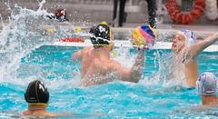 28190797 (roel.ubels) Tags: jong oranje nederland holland duitsland deutschland sport topsport waterpolo 2016 oefenwedstrijd alphen aan de rijn aquarijn