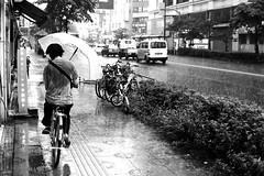 By facing the rain (pascalcolin1) Tags: japan tokyo pluie rain parapluie ombrella vlo bike photoderue streetview urbanarte noiretblanc blackandwhite photopascalcolin