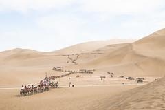 IMG_6865 (chungkwan) Tags: china chinese gansu province weather dry sands canon canonphotos travel world nature landmark landscape   dunhuang  crescent crescentlake  mingsha mingshamountain  camels silkroad