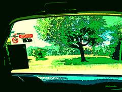 Rock Creek Park #painting (Stephenie DeKouadio) Tags: canon painting washingtondc washington colour color colorful blueandgreen art artistic abstractart abstract