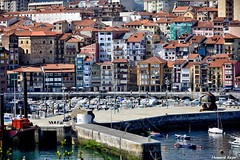 El viejo puerto. (Howard P. Kepa) Tags: paisvasco euskadi bizkaia bermeo puertopesquero barcos marcantabrico muelle espigon casas