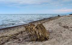Shopping On The Beach (vernonbone) Tags: 1855kitlens 2016 august d3200 eastpoint eastpointpark lakeontario lens ontario beach landscape leadinglines longexposure nikon outside water