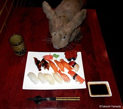 Dr. Takeshi Yamada and Seara (Coney Island Sea Rabbit) at the Sake Japanese sushi buffet restaurant in Brooklyn, NY on March 30, 2016.  20160330 Wed. 8 DSCN4865=3030C. assorted 14 sushi (searabbits23) Tags: searabbit seara takeshiyamada  taxidermy roguetaxidermy mart strange cryptozoology uma ufo esp curiosities oddities globalwarming climategate dragon mermaid unicorn art artist alchemy entertainer performer famous sexy playboy bikini fashion vogue goth gothic vampire steampunk barrackobama billclinton billgates sideshow freakshow star king pop god angel celebrity genius amc immortalized tv immortalizer japanese asian mardigras tophat google yahoo bing aol cnn coneyisland brooklyn newyork leonardodavinci damienhirst jeffkoons takashimurakami vangogh pablopicasso salvadordali waltdisney donaldtrump hillaryclinton polarbearclub