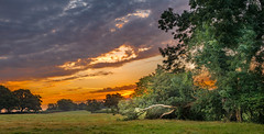 Good morning sunrise) (Marlytyz) Tags: sunrise garden trees
