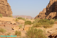 The end of the Canyons in Wadi Rum and the Valley of Aqaba, Jordan (ssspnnn) Tags: acufero watertable nunes spnunes snunes spereiranunes jordan jordania aqaba wadirum cannon montanha areia arena sandstone canoneos70d valley