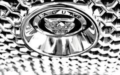 Jaguar grill badge for Macro Mondays (gazzas_pics) Tags: trainsplanesandautomobiles macromondays jaguar grill badge logo bokeh canon 50mmprime 500d black white gabphotography gabpics macro mondays mono monochrome