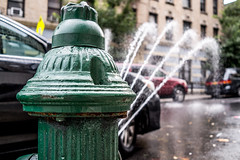 Classic NYC Summer (Phil Roeder) Tags: newyorkcity leica leicax2 washingtonheights firehydrant hydrant green water