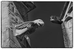 Gargouilles (7) (Phil2No) Tags: et saintantoinelabbaye gargouille