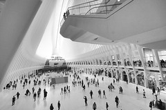 High and wide (Lojones13) Tags: transportationhub newyork oculus blackandwhite worldtradecenter high wide architecture building openspace nikond7000 shopping