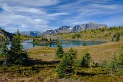 Sunshine Meadows - Banff (robertopastor) Tags: amrica canada canadianrockiesmountain canad fuji montaasrocosas robertopastor viaje xt2 xf1655mm sunshine meadows banff alberta rockislelake