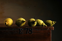 Quince (Studio d'Xavier) Tags: quince stilllife strobist