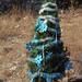 2012_Loop_360_Trees_233