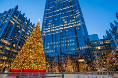 The Christmas tree at PPG Place during the blue hour HDR (Dave DiCello) Tags: beautiful skyline photoshop nikon pittsburgh tripod usxtower christmastree mtwashington northshore northside bluehour nikkor hdr highdynamicrange pncpark thepoint pittsburghpirates cs4 ftpittbridge steelcity photomatix beautifulcities yinzer cityofbridges tonemapped theburgh clementebridge smithfieldstbridge pittsburgher colorefex cs5 ussteelbuilding beautifulskyline d700 thecityofbridges pittsburghphotography davedicello pittsburghcityofbridges steelscapes beautifulcitiesatnight hdrexposed picturesofpittsburgh cityofbridgesphotography
