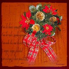 Para todos mis amigos Feliz Navidad  (Lumiago) Tags: navidad rojo felicitacin flickraward christmaspicturegallery rememberthatmomentlevel1