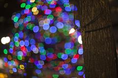 Christmas at Gore Park (Raf Ferreira) Tags: park christmas xmas urban ontario canada tree natal night lights navidad dof bokeh hamilton f gore luzes 12 rafael 58mm circular ferreira peixoto rokkor