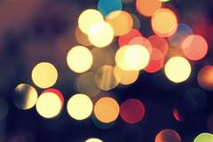 52 Weeks...Week 51: Bokeh (elliemae224) Tags: christmas canon lights bokeh christmaslights 2012 week51 weekofdecember16 522012 52weeksthe2012edition
