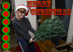 Your Christmas Card (Tim Fitzwater) Tags: laura merrychristmas christmascard fakechristmastree artificialchristmastree cheesychristmascard