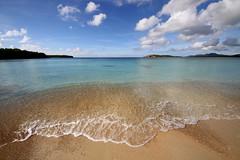 Vieques (O'Bydalej) Tags: ocean beach palms sand puertorico shore caribbean vieques tropics sunbaybeach