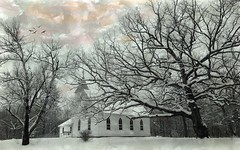 Church In The Wildwood (TicKavich) Tags: trees snow church country textures photomix blinkagain creativephotocafe besteverdigitalphotography besteverexcellencegallery