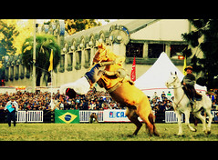 Adelante... (Eduardo Amorim) Tags: horses horse southamerica caballo uruguay cheval caballos cavalos prado montevideo pferde cavalli cavallo cavalo gauchos pferd hest hevonen chevaux gaucho 馬 américadosul montevidéu häst uruguai gaúcho 말 amériquedusud лошадь gaúchos 马 sudamérica suramérica américadelsur סוס südamerika jineteada حصان άλογο americadelsud gineteada ม้า americameridionale semanacriolla semanacriolladelprado eduardoamorim semanacriolladelprado2011 ঘোড়া
