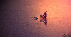 8/100 (SaiAmrut) Tags: food fish river photography boat fisherman sa visual sai calmness conceptions amrut