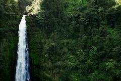 Akaka Falls Close-up (jhokanson) Tags: trees cliff green landscape hawaii waterfall flickr nd slowshutter vegetation lush akakafalls