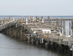Raised Dock (excard1970) Tags: docks newjersey nj damage monmouthcounty pilings atlantichighlands hurricanesandy superstormsandy