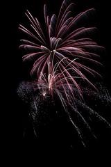 Nightflowers (Mac_The_Knife) Tags: longexposure sparkles long exposure nightlights fireworks newyear newyearseve newyears sparkler sparks 2012 pyrotechnics nightflowers 2013 nightblossoms nightblossom