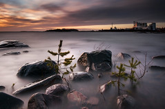 Grytudden - Sunset (- David Olsson -) Tags: longexposure winter sunset lake seascape industry nature water pine clouds landscape nikon rocks factory sundown cloudy sweden stones branches smoke tripod january newyear le pollution firstday fir colourful vnern storaenso dx hammar vrmland 1635 ndfilter goodstart 1635mm lakescape smoothwater skoghall 2013 environmentaldegradation 2exposures minitrees d5000 manualblend manuallyblended davidolsson nd500 lightcraftworkshop skoghallsverken 1635vr skoghallsbruk grytudden
