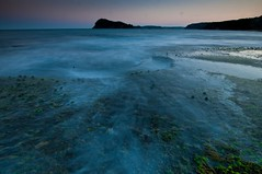 Pearly (yellowplease) Tags: sunset sea test beach water misty night moss nikon long exposure shots sigma australia pearl 1020mm f35 d300