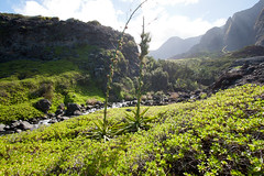 Kalalau River