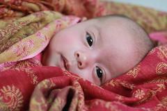 Fabric (jimmyhu) Tags: red baby face bigeyes eyes fabric micro protrait babyface protraiture