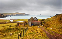 Shetland landscape (piper969) Tags: panorama landscape scotland isle shetland isola scozia uploaded:by=flickrmobile flickriosapp:filter=nofilter