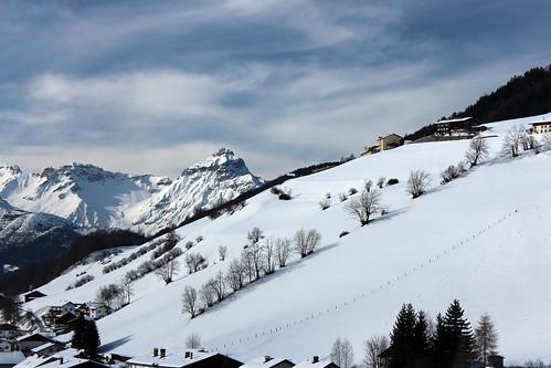 Blick von Navis (mikiitaly) schnee winter sterreich bume wipptal navis nordtirol photographyforrecreation elementsorganizer11