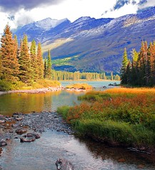 Autumn is coming *Explore'd* (younglyonss) Tags: autumn mountains river glacier autumncolours glaciernationalpark autumntrees autumnscene gnp