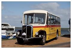 1961 - Saurer SV2C (Ruud Onos) Tags: 1961 saurer sv2c be1646 1961saurersv2c nationale oldtimerdag lelystad nationaleoldtimerdaglelystad ruudonos oldtimerdaglelystad havhistorischeautomobielverenigingnederland
